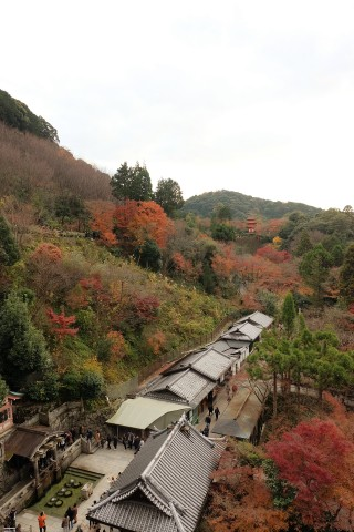 kyoto1612054.jpg