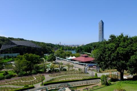 Higashiyama31.jpg